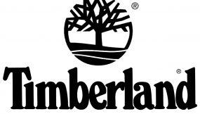 Timberland Spot